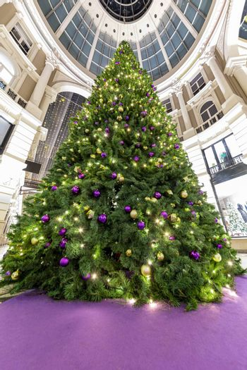 Huge christmas tree in The Hague celebrating the Christmas and the New Year season
