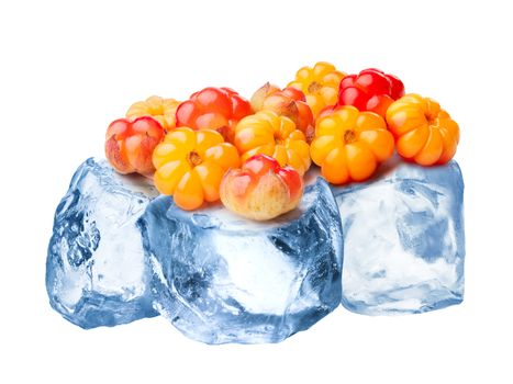 Heap of wild cloudberries freezing on rough crushed ice. Clipping paths for cloudberry and for whole composite