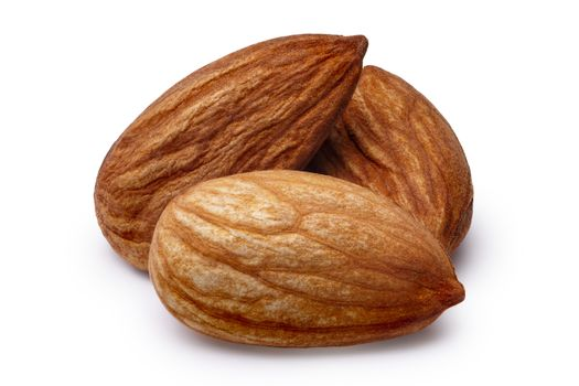 Three shelled almonds (fruits of Prunus amygdalus). Infinite depth of field,clipping paths