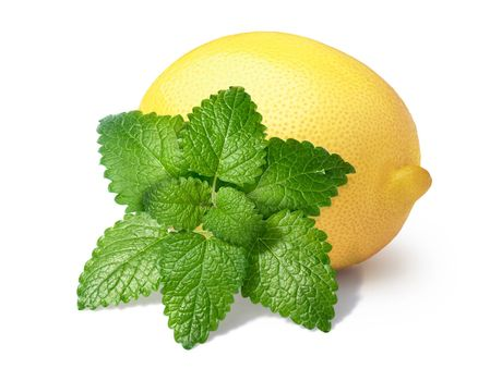 Whole lemon with with  mint balm (Melissa). Clipping paths for composite and for shadows, infinite depth of field