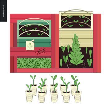 Urban farming and gardening - seedbeds