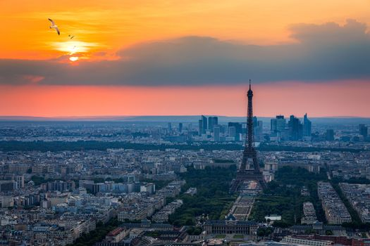 View of Paris with Eiffel Tower from Montparnasse building. Eiffel tower view with flying birds from Montparnasse at sunset, view of the Eiffel Tower and La Defense district in Paris, France.