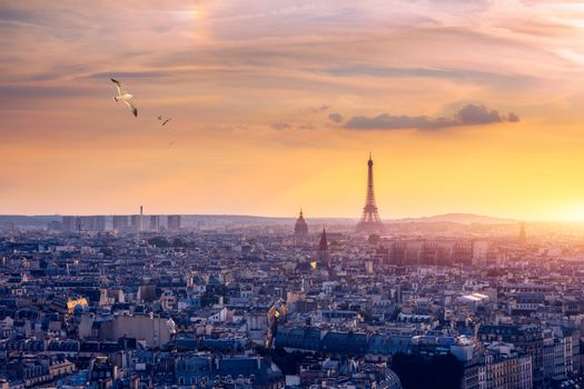 Paris, France, Seine river cityscape in summer colors with birds flying over the city. Paris city aerial panoramic view. Paris is the capital and most populous city of France. Postcard of Paris.