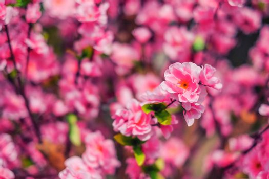 Pink Plastic Sakura flower