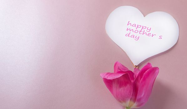 Mother's day greeting card, white paper heart and one pink Tulip on a soft pink background. Social charity event.