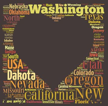 Illustration with word cloud on US states.
