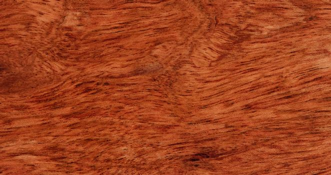 Solid Brazilian cherry wood texture background in filled frame f