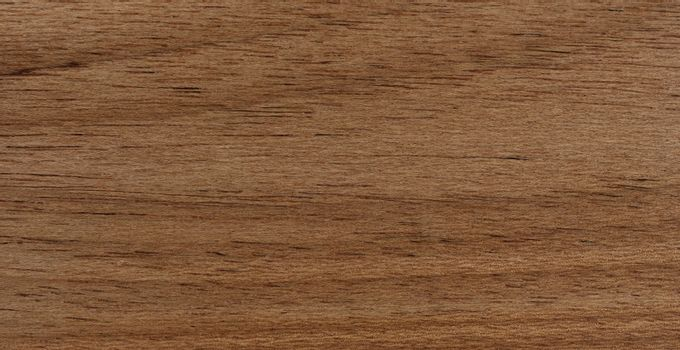 Solid Brazilian oak wood texture background in filled frame form