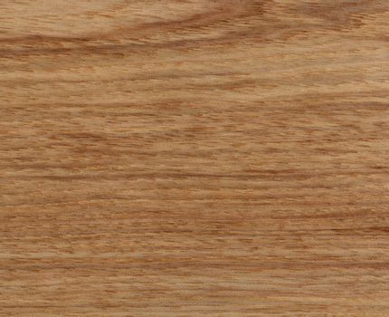 Solid American Hickory wood texture background in filled frame f