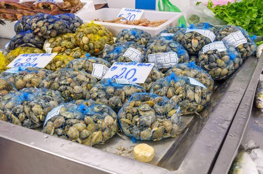 Fresh clams at the fish market in Portugal