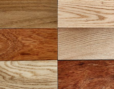 Solid Variety of hardwood texture background in filled frame for