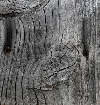 Aged wood texture background in filled frame format