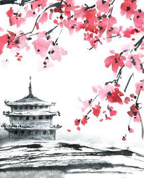 Pagoda and blossom sakura tree