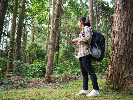 Young woman traveler searches GPS coordinates on tablet in forest on summer vacations day. Lifestyle hiking concept.