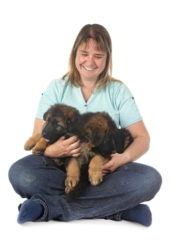 puppies german shepherd and woman in front of white background