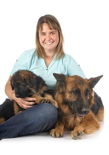 german shepherds and woman in front of white background
