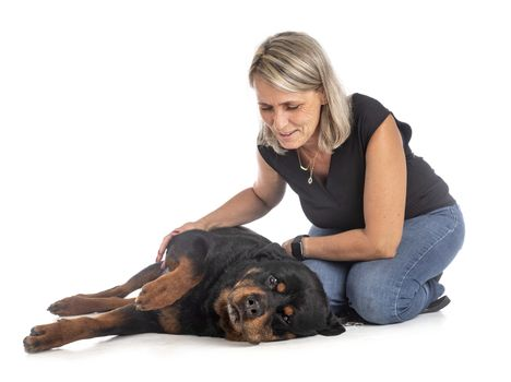 purebred rottweiler and woman in front of white background