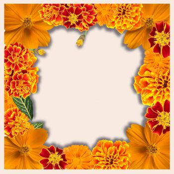 Beautiful floral frame with Various Yellow and orange color Flowers collection