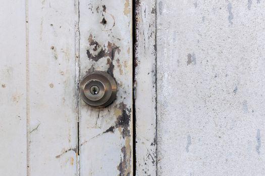 Minimalism style, Wood door and wall