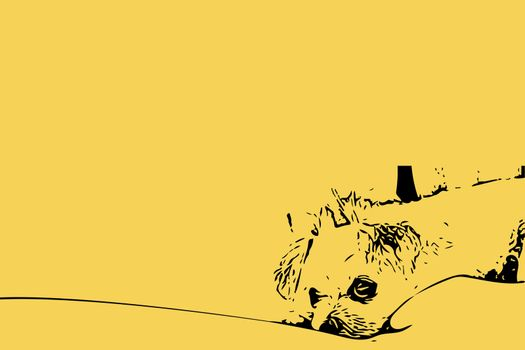 Sketch drawing of sweet dog on yellow background