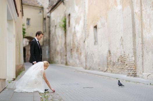Bride and groom feeding a pigeon