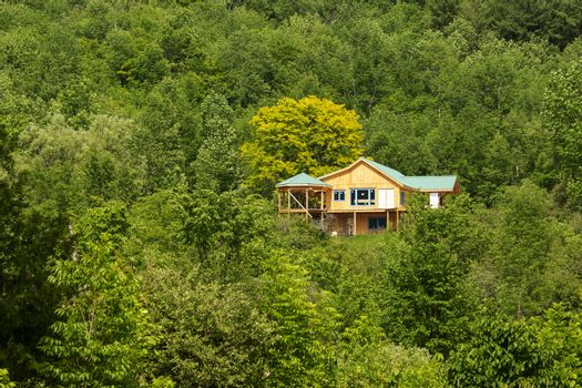 Wooden house under construction in a forest surrounded by deciduous trees