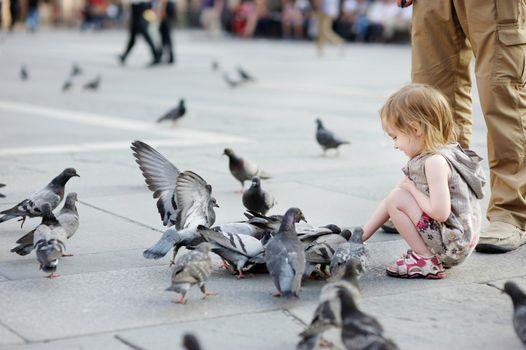 Adorable little girl feeding pigeons