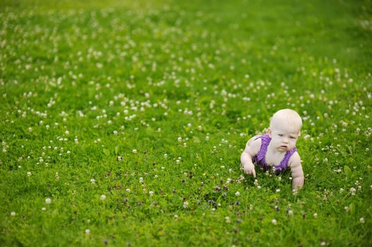 Baby crawling on a green grass