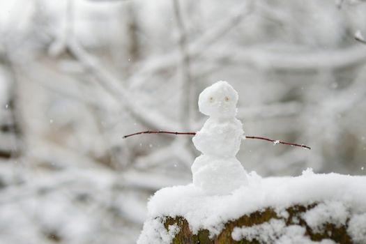 Tiny little snowman