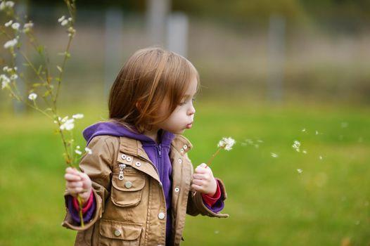 Adorable girl blowing off dandelion