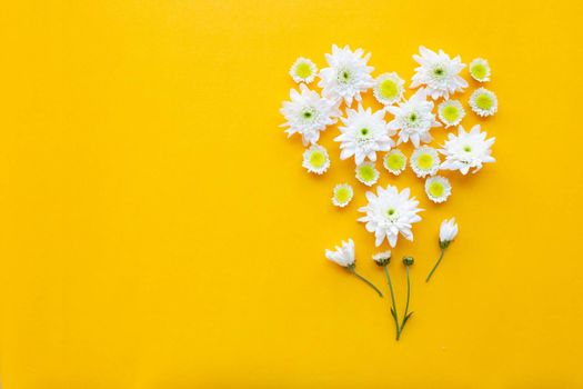 Composition of flowers,  Chrysanthemums on yellow paper background. Copy space