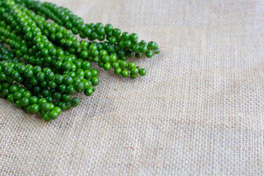 fresh green peppercorns  on sackcloth background