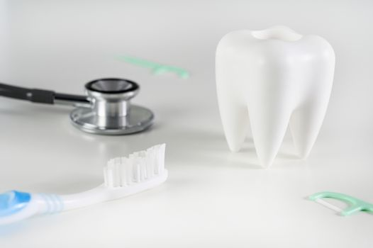 dental  concept Dental model and dental equipment dental hygiene Dentist tools