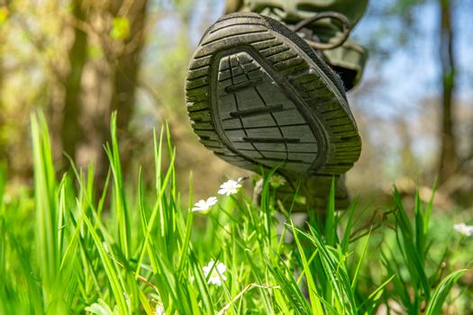 a man's foot steps on a blooming flower in the forest. Humanity and the environment. copy space