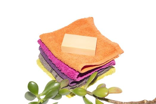 soap on facecloths of various shades with natural green plant