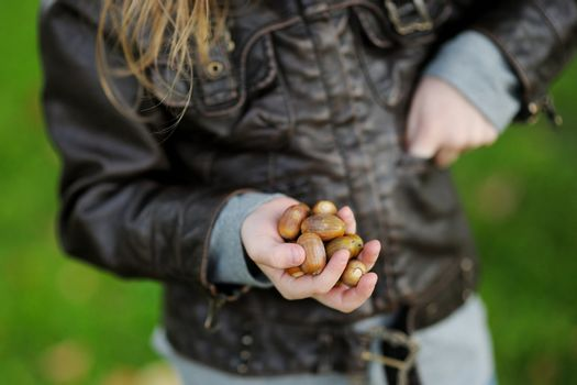 Little girl gathering acorns on autumn day