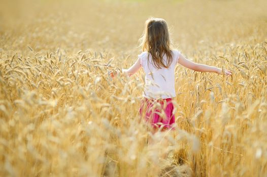 Adorable girl in wheat field on warm summer day