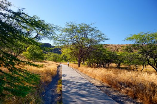 A trail to Diamond Head crater viewpoint on Oahu, Hawaii