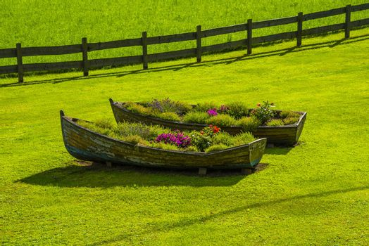 two old wooden boats used as planters in the middle of a green lawn