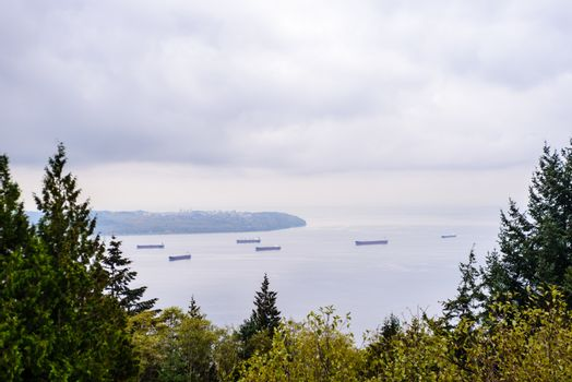 Large cargo ships anchored in Burrard Inlet, just outside the entrance to Vancouver Harbour, viewed from between trees, near Vancouver, BC, Canada.