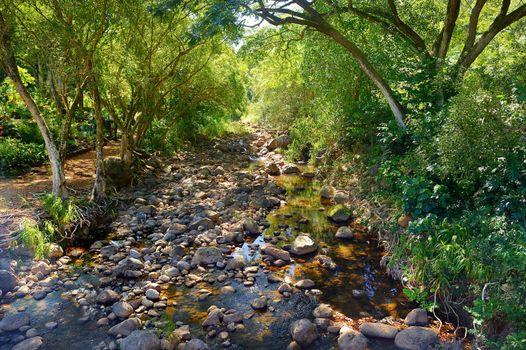 Mountain river at Waimea state park