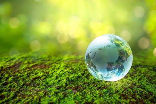 The crystal ball stands on the green grass. Concept day earth Save the world save environment