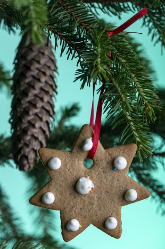 christmas cookie on a fir tree