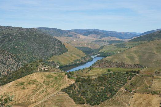 Douro river wine valley region in Portugal