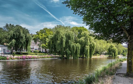 Park-like scene with trees and flowers along Singel in Amsterdam