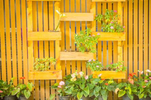 Beautiful wooden vertical garden wall with square ornamental flower pot in vertical style. Decorated vertical garden with small flower pot hanger box.