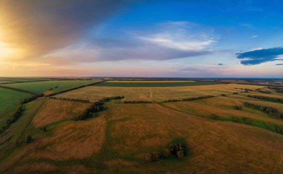 Aerial view on the field during sunset. Agricultural landscape from drone.