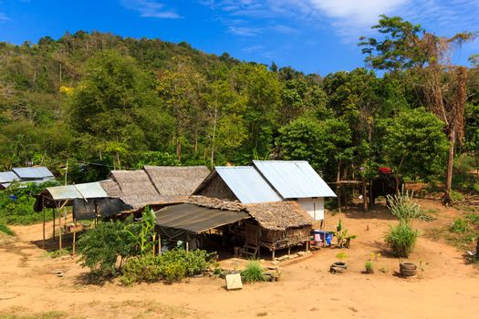Thai jungle in Phuket