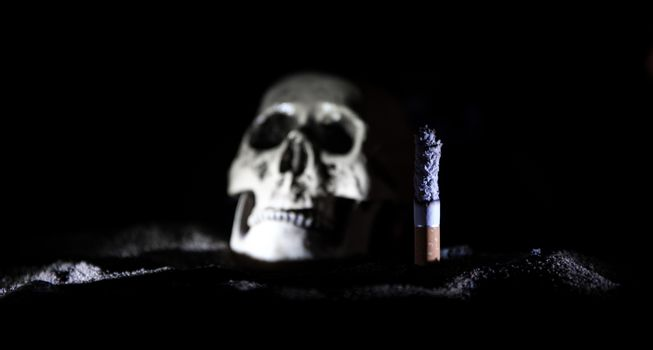 No smoking concept. Creative artwork table decoration with cigarettes. Cigarettes cause cancer and kill. still life skull and sigarette. Selective focus