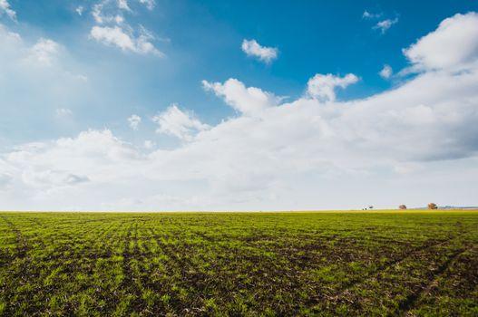 Green field with clouds and beautiful sky. Dramatic scene. Azerbaijan. Selective focus